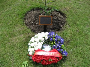 Wreath laid by the oak sapling